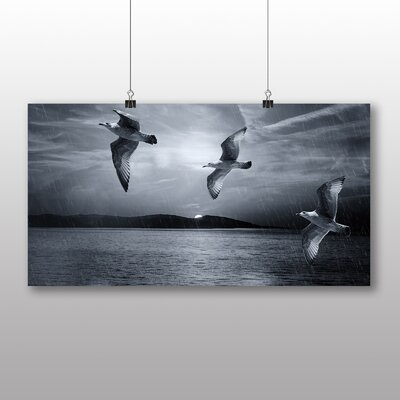 Big Box Art Seagulls in the Rain Photographic Print