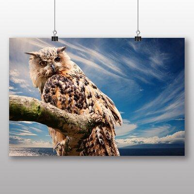 Big Box Art Owl No.3 Photographic Print
