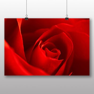 Big Box Art Rose Flower No.7 Graphic Art
