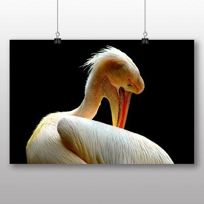 Big Box Art Pelican Photographic Print