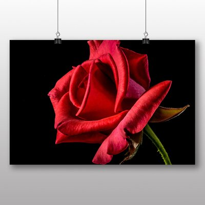 Big Box Art Red Rose Flower No.2 Photographic Print