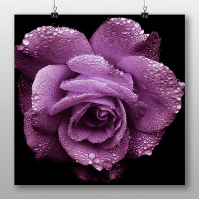Big Box Art Purple Rose Flower No.3 Photographic Print