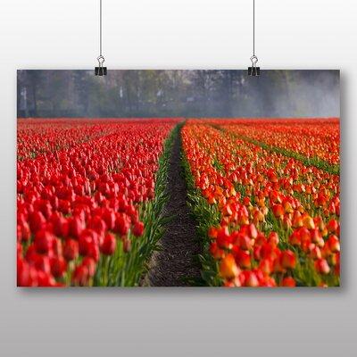 Big Box Art Tulips Netherlands Photographic Print