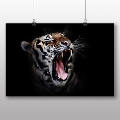 Big Box Art Tiger Photographic Print