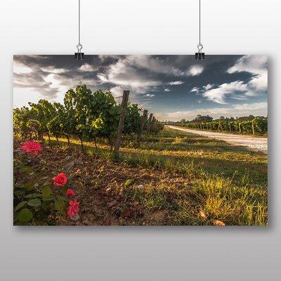 Big Box Art Tuscany Vineyard Photographic Print