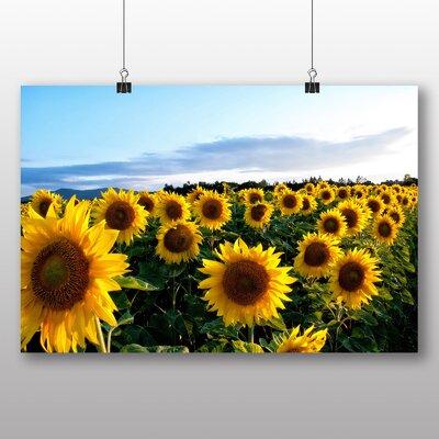 Big Box Art Yellow Sunflowers Flower No.4 Photographic Print