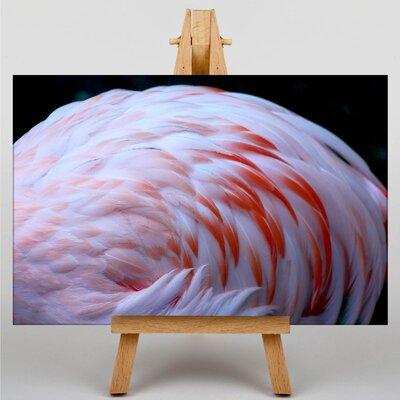 Big Box Art Pink Flamingo No.2 Photographic Print Wrapped on Canvas