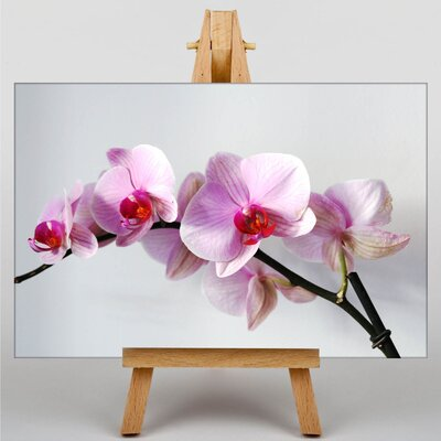 Big Box Art Orchid Flower No.2 Photographic Print on Canvas