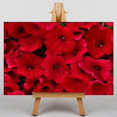 Big Box Art Seeing Flowers Photographic Print on Canvas