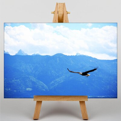 Big Box Art Soaring Eagle Photographic Print on Canvas