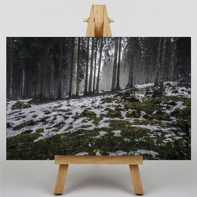 Big Box Art Snowy Woodland Photographic Print on Canvas