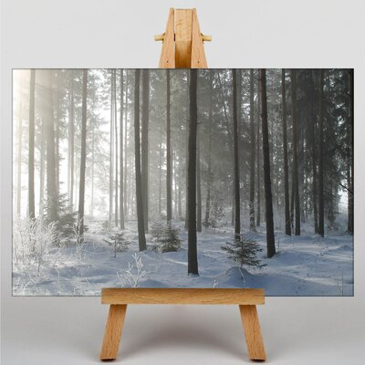 Big Box Art Sunlight Forest Wood No.13 Photographic Print Wrapped on Canvas