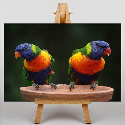 Big Box Art Rainbow Lorikeet Parrots Photographic Print on Canvas