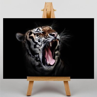 Big Box Art Tiger Photographic Print Wrapped on Canvas