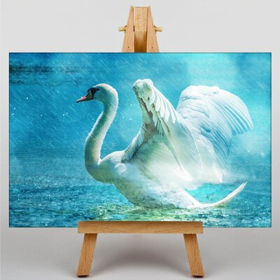 Big Box Art swan No.3 Photographic Print on Canvas