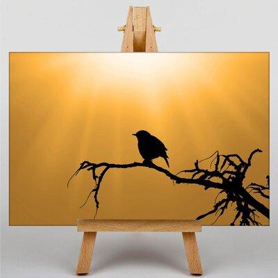 Big Box Art Sparrow Graphic Art on Canvas