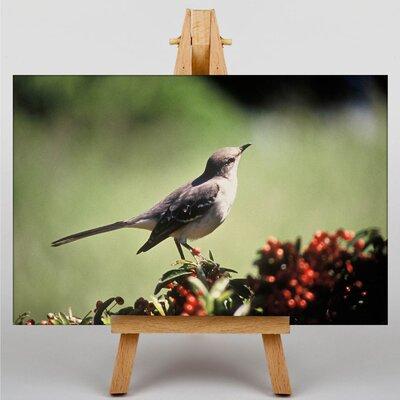 Big Box Art Mockingbird Photographic Print on Canvas