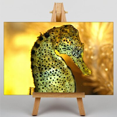 Big Box Art Seahorse Graphic Art Wrapped on Canvas