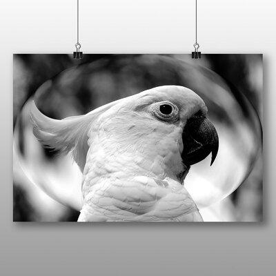 Big Box Art Cockatoo No.2 Photographic Print