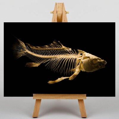 Big Box Art Fish Skeleton Graphic Art on Canvas