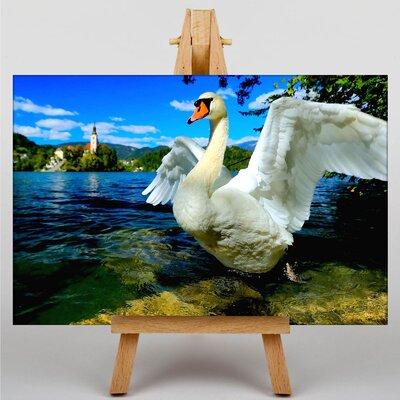 Big Box Art Swan Slovenia Lake Photographic Print Wrapped on Canvas