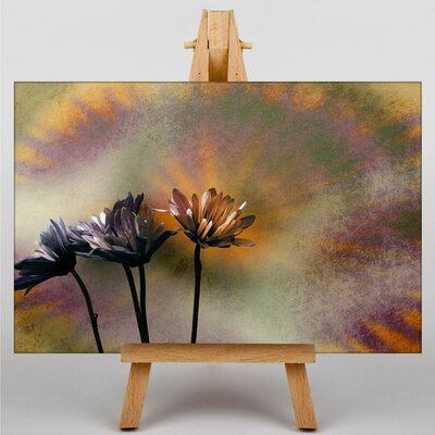 Big Box Art Daisy Flower Graphic Art Wrapped on Canvas