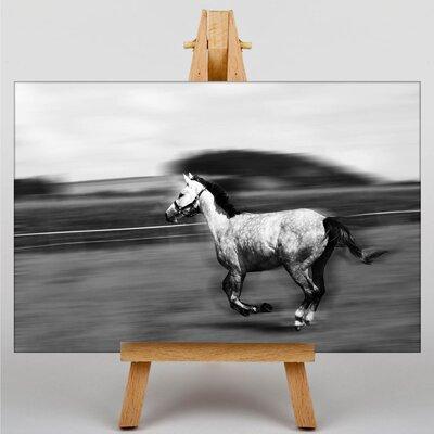 Big Box Art Horse Racing Graphic Art on Canvas