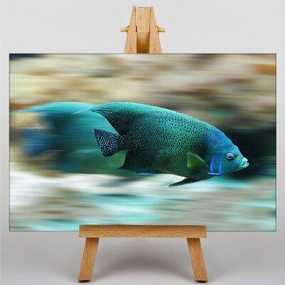 Big Box Art Fish No.2 Graphic Art Wrapped on Canvas