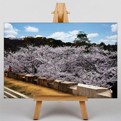 Big Box Art Osaka Castle Japan Photographic Print on Canvas