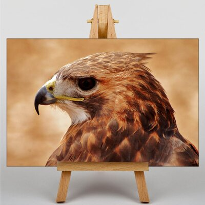 Big Box Art Hawk Photographic Print Wrapped on Canvas