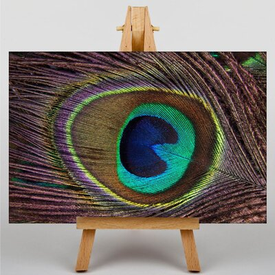 Big Box Art Peacock Feather Graphic Art on Canvas