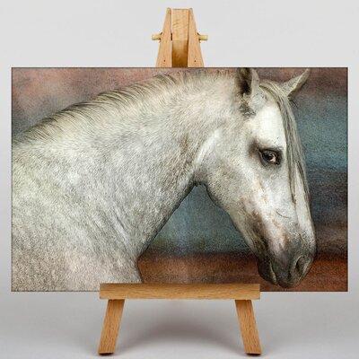 Big Box Art Horse Art Photographic Print on Canvas