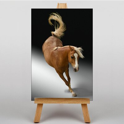 Big Box Art Horse No.3 Graphic Art on Canvas