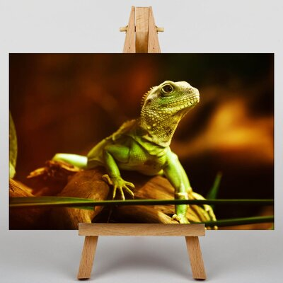 Big Box Art Lizard Photographic Print on Canvas