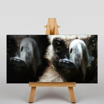 Big Box Art Vultures Photographic Print on Canvas