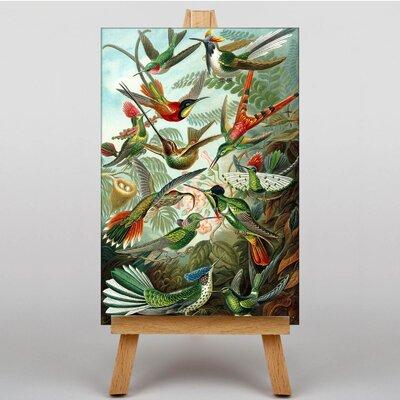 Big Box Art Hummingbirds Vintage Graphic Art on Canvas