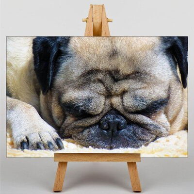 Big Box Art Pug Dog Photographic Print on Canvas