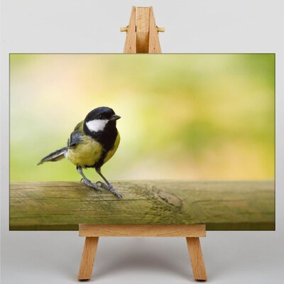 Big Box Art Tit Photographic Print on Canvas