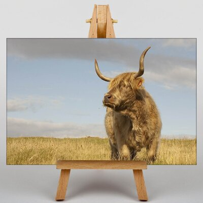 Big Box Art Cow No.4 Photographic Print on Canvas