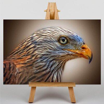 Big Box Art Kite Bird Photographic Print on Canvas