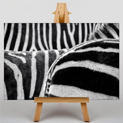 Big Box Art Zebras No.2 Photographic Print on Canvas