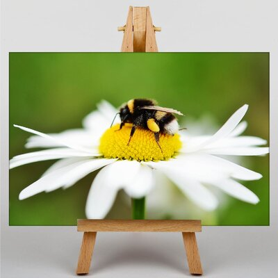 Big Box Art Bumble Bee Daisy Photographic Print Wrapped on Canvas