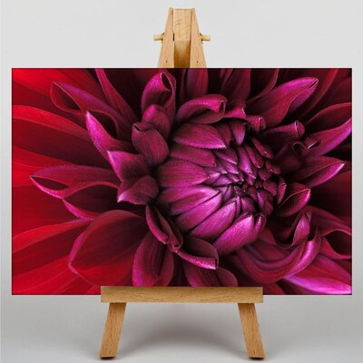 Big Box Art Flower Photographic Print on Canvas