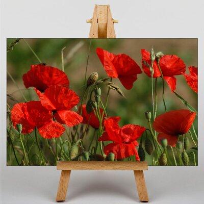 Big Box Art Poppy Field Flowers No.5 Photographic Print on Canvas