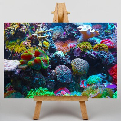 Big Box Art Coral Reef Fish No.5 Photographic Print Wrapped on Canvas