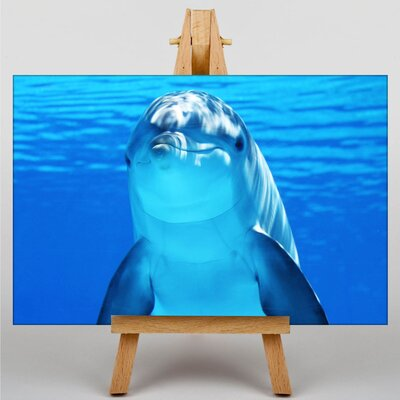 Big Box Art Dolphin Photographic Print Wrapped on Canvas