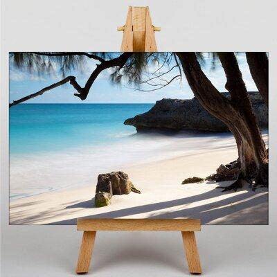 Big Box Art Palm Tree Tropical Beach No.2 Photographic Print on Canvas