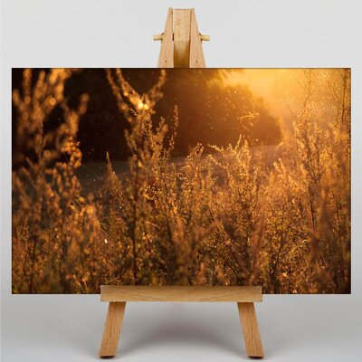 Big Box Art Sunlight over Meadow Photographic Print on Canvas