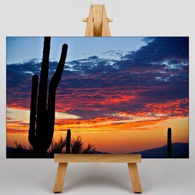 Big Box Art Cactus Sunset Photographic Print on Canvas