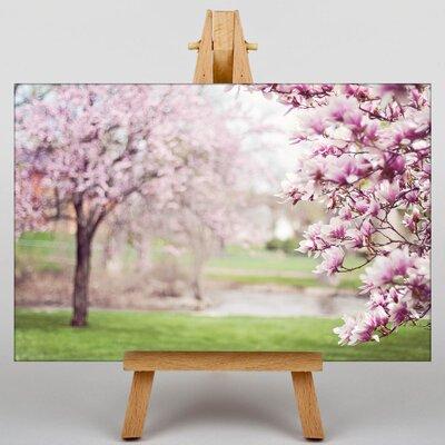 Big Box Art Magnolia Blossom Tree Photographic Print on Canvas